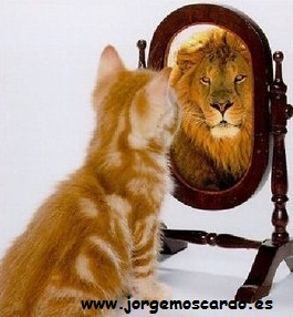 realidad-leon