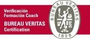 Coach Personal, Coach Profesional
