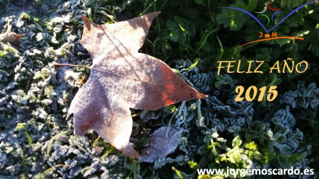Feliz Año Nuevo 2015